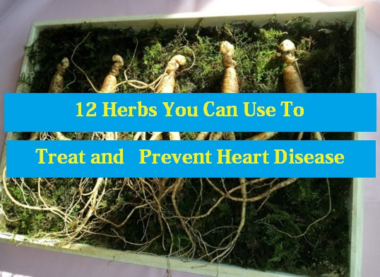 Treat and Prevent Heart Disease