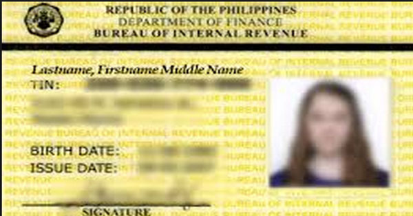 How-To-Apply-For-Your-Digitized-Taxpayer-Identification-Number