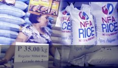 How-to-Apply-for-License-to-Sell-NFA-Rice-or-Corn